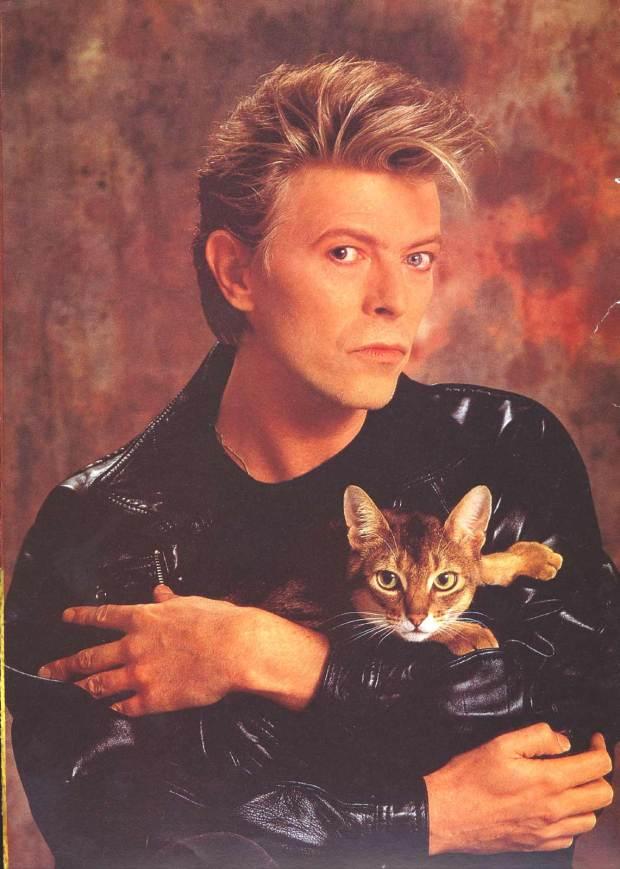 David-Bowie-david-bowie-31564924-1141-1600